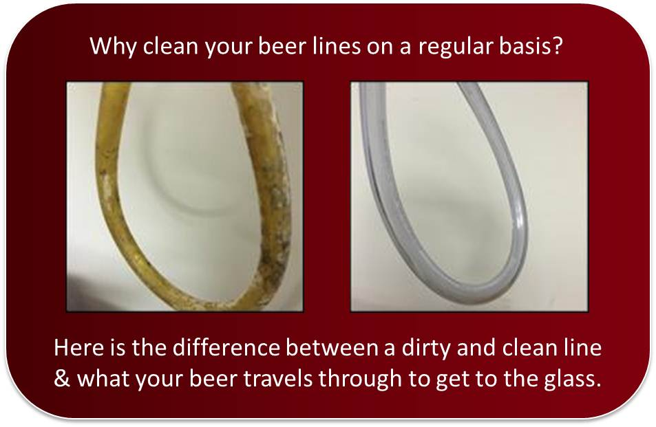 Draught Line Cleaning - The Importance of Clean Lines for Beer and Wine Distributors